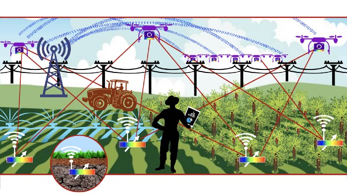 Illustration of crop field equipped with IoT sensors