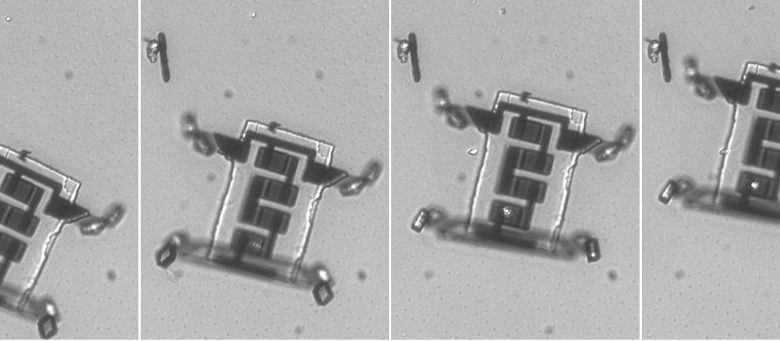 Frames of a video showing a microscopic robot walking