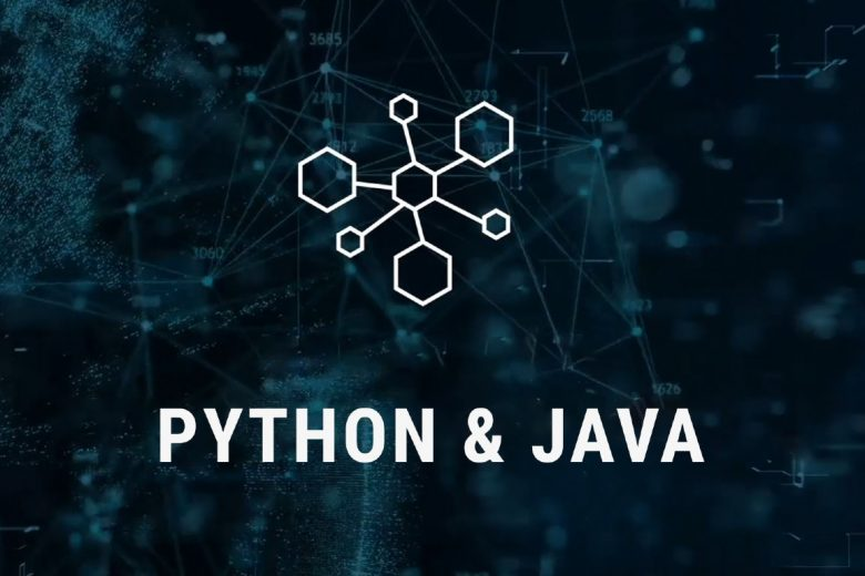 "Course logo that says ""Python & Java"""