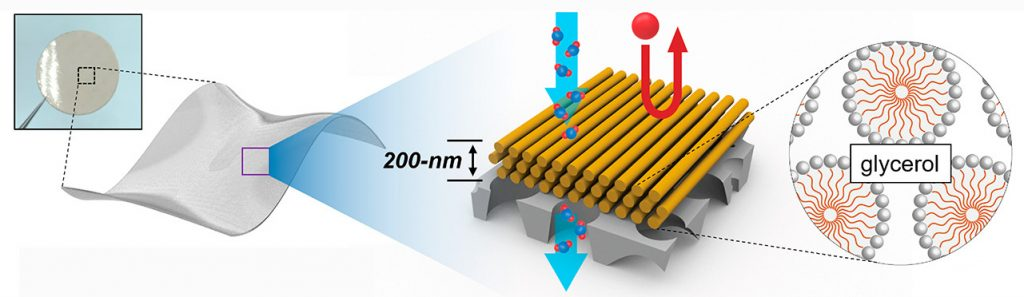 Illustration showing the structure of Osuji's nanofiltration membranes.
