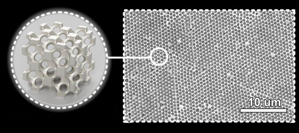 Microscope image and inset illustration showing metallic wood's nanoscale pores